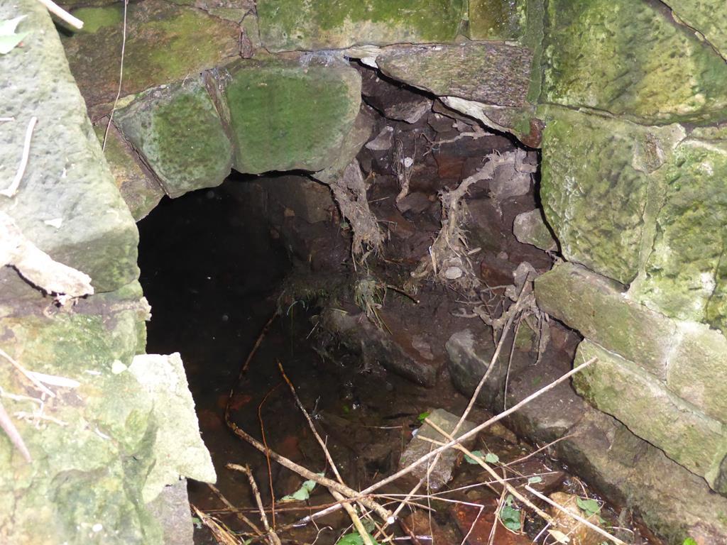 Durch die Wurzeln der Pappeln beschädigtes Gewölbeportal